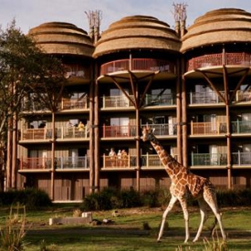 Disney's Animal Kingdom Lodge (4*) – Florida