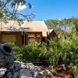 Serenity Eco Luxury Tented Camp (4*) – Yucatan