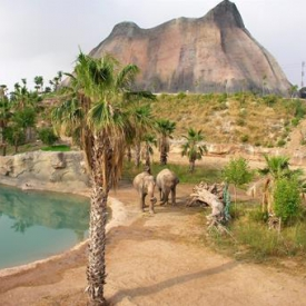 Magic Natura Animal, Waterpark & Polynesian Lodge (4*) – Costa Blanca